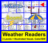 Weather Mini Books:  Differentiated with 3 Levels + Illustrated Word Wall