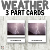 Weather 3 part cards for Montessori or hands-on activities
