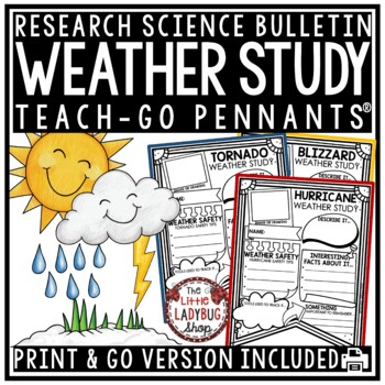 Weather Activity Poster • Teach- Go Pennants™