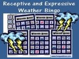 Weather Bingo: Receptive and Expressive Language Activity