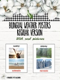 Bilingual Weather Posters (English/Spanish)