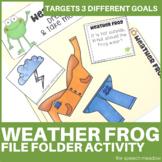Weather Frog   File Folder Game  