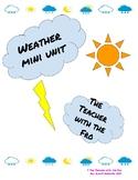 Weather Mini Unit
