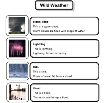 Weather - Natural Disasters Vocabulary Handout