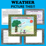 Weather Patterns Picture This! - Warm, Cold, Stationary, Occluded Front, etc