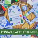 Weather Printables   Weather Station   Weather Posters   W