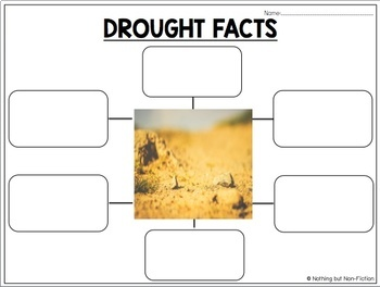 Weather Reading Passage: Drought ::FREEBIE::