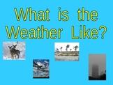 Weather Shared Reading PowerPoint for Kindergarten