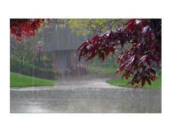 Weather- Sorting