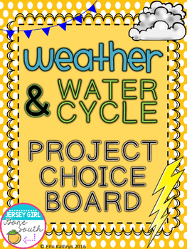 Weather & Water Cycle Project Choice Board