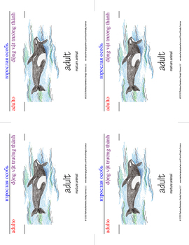 Whale Word Cards