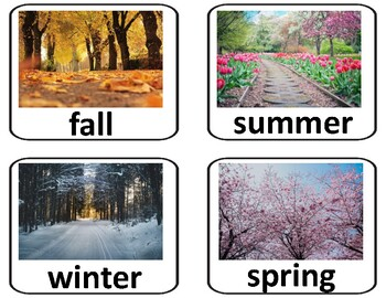 Weather and Seasons Flash Cards for Special Education and ESL (VIPKID)