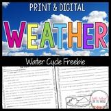 Weather - Water Cycle FREEBIE