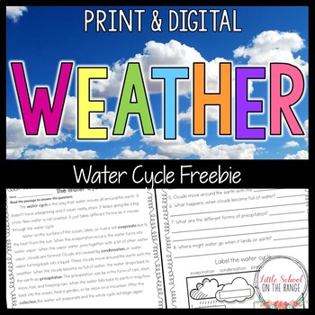 Weather and Water Cycle FREEBIE