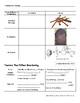 Weathering, Erosion & Deposition Unit Packet
