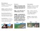 Weathering, Erosion, and Deposition brochure
