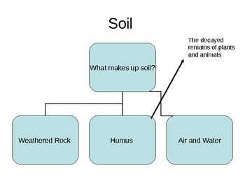 Weathering, Soil, and Fossils Powerpoint