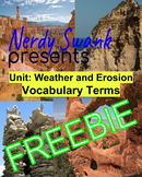 Weathering and Erosion Vocabulary Fill-In-The-Blank Worksheet