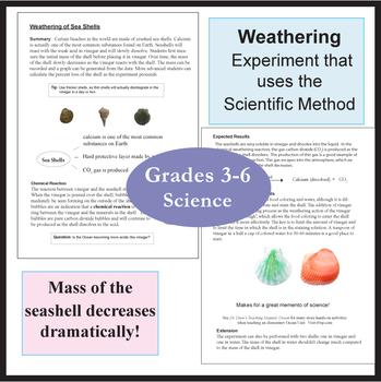 Weathering of Seashells Activity Experiment