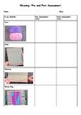 Weaving Pre & Post Assessment
