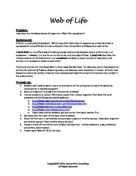 Web of Life (Food Web/Food Chain)
