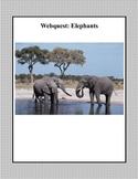 Elephants -Webquest