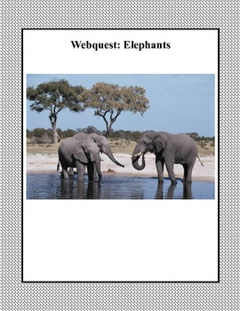A WebQuest All About Elephants