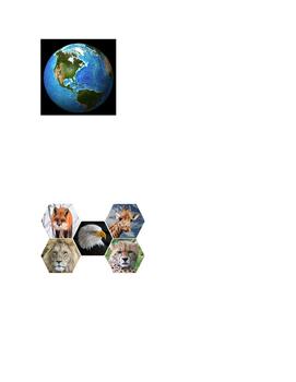 WebQuest: Animal Classification, Habitats, and Adaptation
