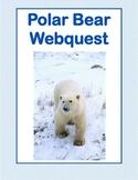 -Polar Bears, Majestic Mammals-WebQuest