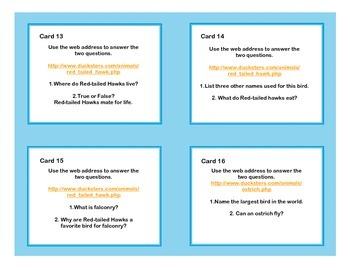 Birds -Interesting and Unusual -WebQuest Task Cards