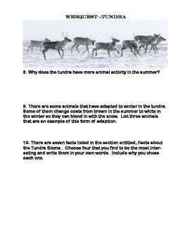 Tundra - WebQuest
