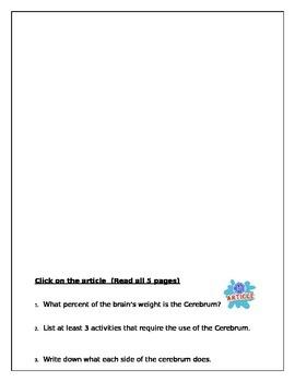 WebQuest on Nervous System and Brain