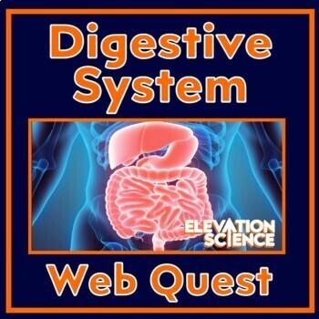 Webquest:  Digestive System (Includes Google doc. student pages)