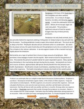 Webquest Freshwater Wetlands - Everglades Climate Change