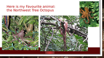 Website Reliability: The Tree Octopus Fake or Real