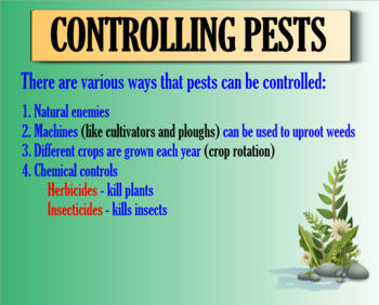 Weeds and Pests