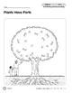Week 10: Plants Have Parts (Everyday Literacy, Science)