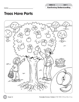 Week 13: Trees Have Parts (Everyday Literacy, Science)