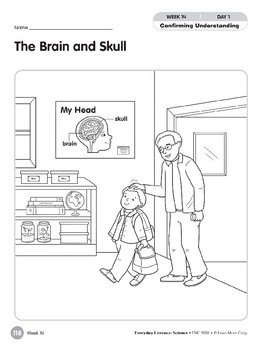 Week 14: The Brain and the Skull (Everyday Literacy, Science)