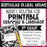 Grammar Third Grade Activities: Irregular Plural Nouns