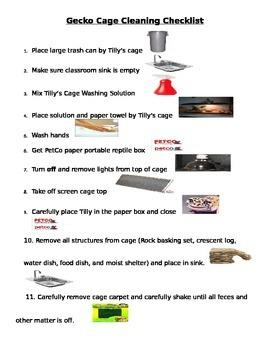 Weekly Leopard Gecko Checklist w/ Visuals