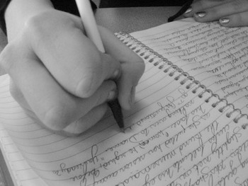 Weekly Paragraph and Weekly Essay Bundle (Includes 5)