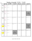 Weekly Planning Sheet (*Editable*)