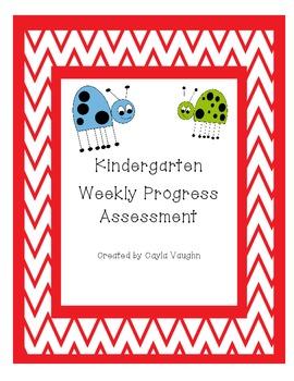 Weekly Progress Assessment