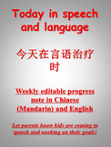 Weekly Speech Progress Note (Chinese and English)