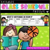 Weekly Timetable Freebie