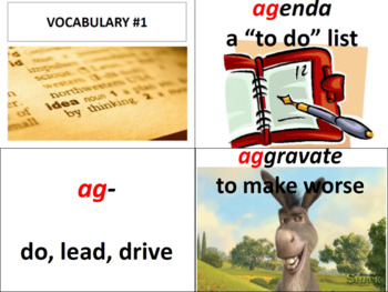 Vocabulary Review Unit
