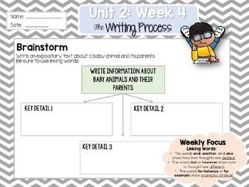 Weekly Writing Process (2nd Grade Wonders) Unit 2: Week 4