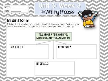 Weekly Writing Process (2nd Grade Wonders) Unit 3: Week 3