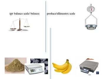 Weight/Scales Activity
